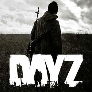 dayz-v2-300px