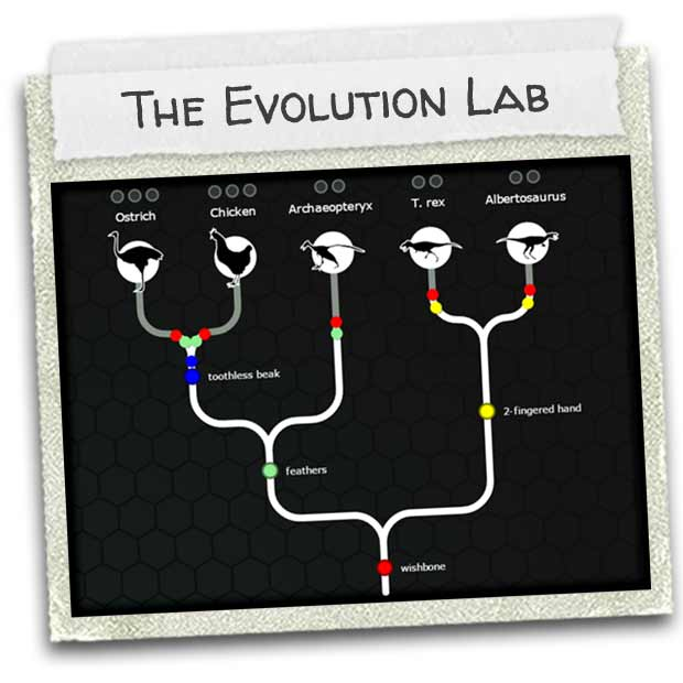 indie-27may2015-01-the_evolution_lab