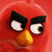 К 10-летию «злых птичек» в прокат выйдет сиквел «Angry Birds в кино»