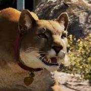 Видео о тонкостях войны с сектантами в Far Cry 5