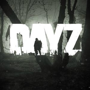 dayz__02-12-17.jpg