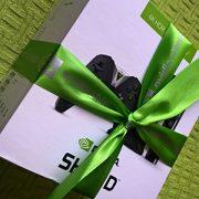 Железные впечатления: Nvidia Shield TV с обновлённым сервисом GeForce NOW