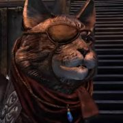 Красоты родины каджитов в новом видео The Elder Scrolls Online: Elsweyr