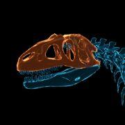 Докопаться до прошлого: в Dinosaur Fossil Hunter вы будете изучать динозавров