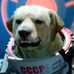 Видео: сцена с Космо из Marvel's Guardians of the Galaxy
